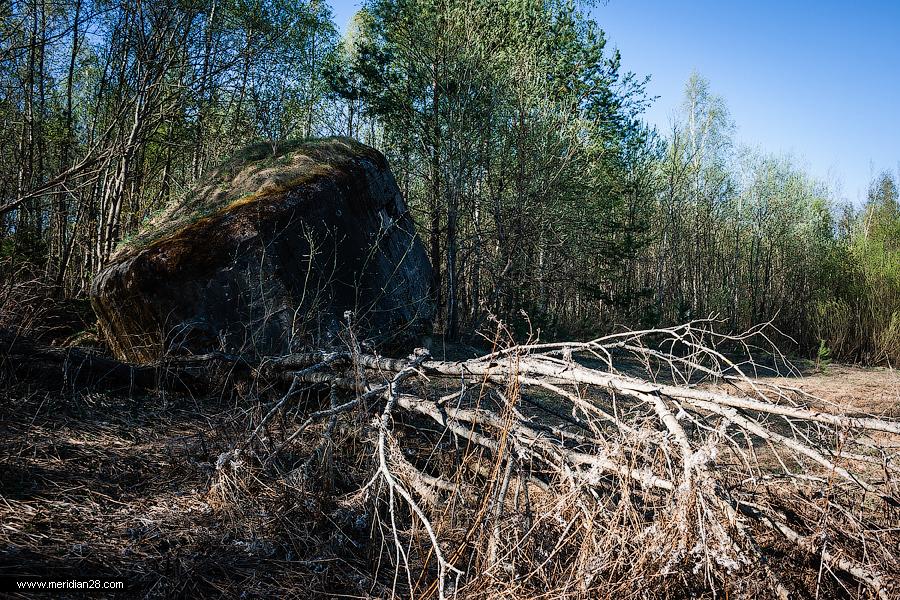 В Севастополе найдена долговременная огневая точка времён войны
